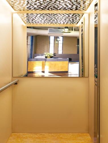 Cabine per ascensori igv group for Cabine di giglio selvatico